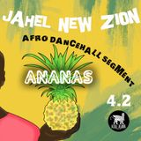 Afro-Dancehall Live Segment From  ANANAS - Jahel New Zion
