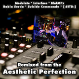 DJLiquid: Remixed from the Aesthetic Perfection