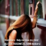 Disclosure - Help me lose my mind (DJ ELEKTROSCHNITZEL mix)