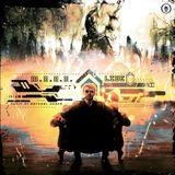 M.o.n.o. LIVE ( BASSmaschinenCODE )   ///   PROMOMIX   ///   MUSIC OF NATURAL ORDER