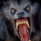 Howl Of The Demon Night Of The Werewolf