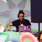 ScamAntrix - Wilderness DJ Set - Psygressive