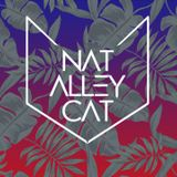 Nat Alley Cat - Soft landing (Deep/progressive/electro)
