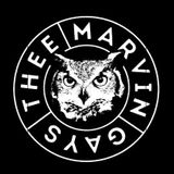 #53 (S2#20) w. THEE MARVIN GAYS [garage psych / Tournai / BE] - 15/01/2015
