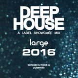 Deep House Label Showcase: Best of Large Music 2016