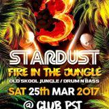 Cybergroove b2b Neo Funk - Stardust - Fire in The Jungle