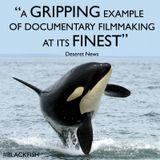 """Blackfish"" - the Tilikum documentary! In conversation with director Gabriela Cowperthwaite"