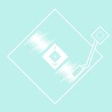 PSR8 • Gazerbeen