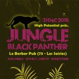 """Live @ Le Barbar Pub (""""Jungle Black Panther"""" party by High Potential)"""