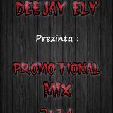 DJ ELy - Promotional Mix 2k14