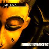 Mr. F.N.X. - Tribal Mix Line