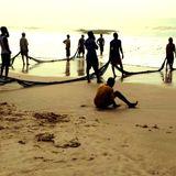 Verão em sohno Vol.1: Seagulls in Accra at sunset