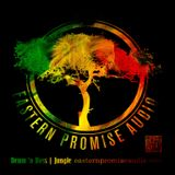 Phuture-T : The Eastern Promise Audio Radio Show Jungletrain.net 30-01-2015
