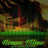 DJ SPINMASTER - HOUSE VIBES