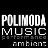 performance ambient POLIMODA 2015