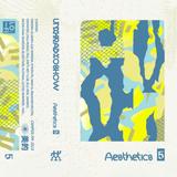 Aesthetics Vol.5