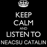 Neacsu Catalin @ Welcome to my private party ( House Mix 2013 )