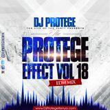 Dj Protege The Protege Effect Vol 18