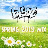 DJ Faydz - Spring 2019 Mix