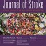 Burden of stroke in Argentina – an interview with Professor Conrado Estol