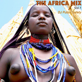 DJ Public Safety Presents... The Africa Mix vol. 1