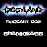 Diggyland PODCAST 002 by SPANKBASS
