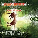 Om Garuda @ Ownspirit Festival 2017 (Temple Of Frequencies)