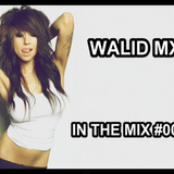 Walid Mx - In The Mix #005