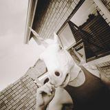 Jacob Phono - Goodbye Cape Town Deep Mix, 07-01-2013