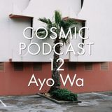 Cosmic Delights Podcast - 12 Ayo Wa