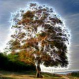 Steve Roach - Origin - Paulstretched