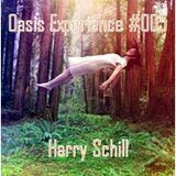 Oasis Experience #005 By Harry Schill