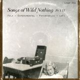 dfbm #96 - Songs of Wild Nothing Pt. VII