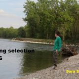 spring selection 2016