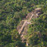 Una postal de mi selva (El Dusty - iZem - Pa Kongal - Ovni Guaraje - Xanga - Lascivio Bohemia)