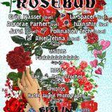 Rosebud;!;!;!;!;!;!;!;!;! live mix~