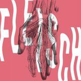 FLEISCH #002 // Halv Drøm