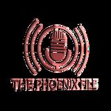 THE PHOENIX FILE - EP 32 Karen Jayne of STARDUST NONPROFIT BUILDING SUPPLIES