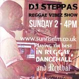 Reggae Vibez Show - Reggae Dancehall & more (Dec 10th)