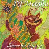 DJ Meeshu - Soul Spa 6-10-12