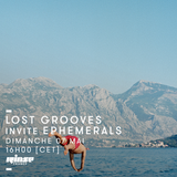 Lost Grooves Radio Show #29 Rinse Fr (special guests The Ephemerals / Jalapeno Rec )