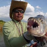 Tiger Fish's 10years ago