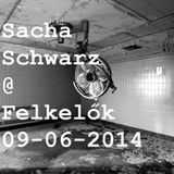 Sacha Schwarz guest mix