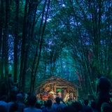The Woods of Pickathon, 2015, xray.fm