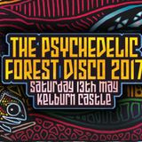 Psychedelic Forest Disco 2017 Promo Mix