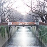 Winter'z Day in Tokyo Mixed by Dj N