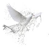 Semana con el Espíritu Santo