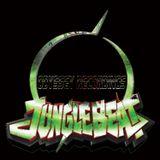 Jungle Odyssey (VINYL) Mix By Narkotix.