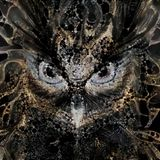 Formicularix alias The Dark Ant - How far can your Mind go before heart Stop
