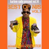 vol.14 best of NJS vol.1